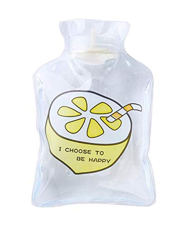 感染する花瓶捨てる2 PCS かわいいミニ湯たんぽ冬は暖かい湯たんぽを保つC02