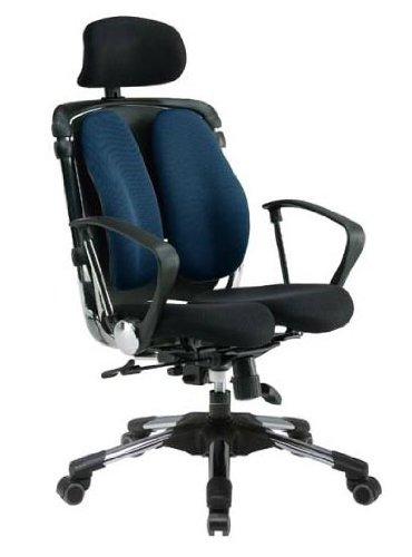 Hara Chair(ハラチェア)ニーチェ(ネイビー)オフィスチェア オフィスチェアー 高機能チェア 高機能チェアー 高機能 パソコンチェアー デスクチェアー リクライニング ハイバック メッシュ 腰痛 イス 椅子 事務用 回転 チェア (HARAチェアー ハラチェアー)