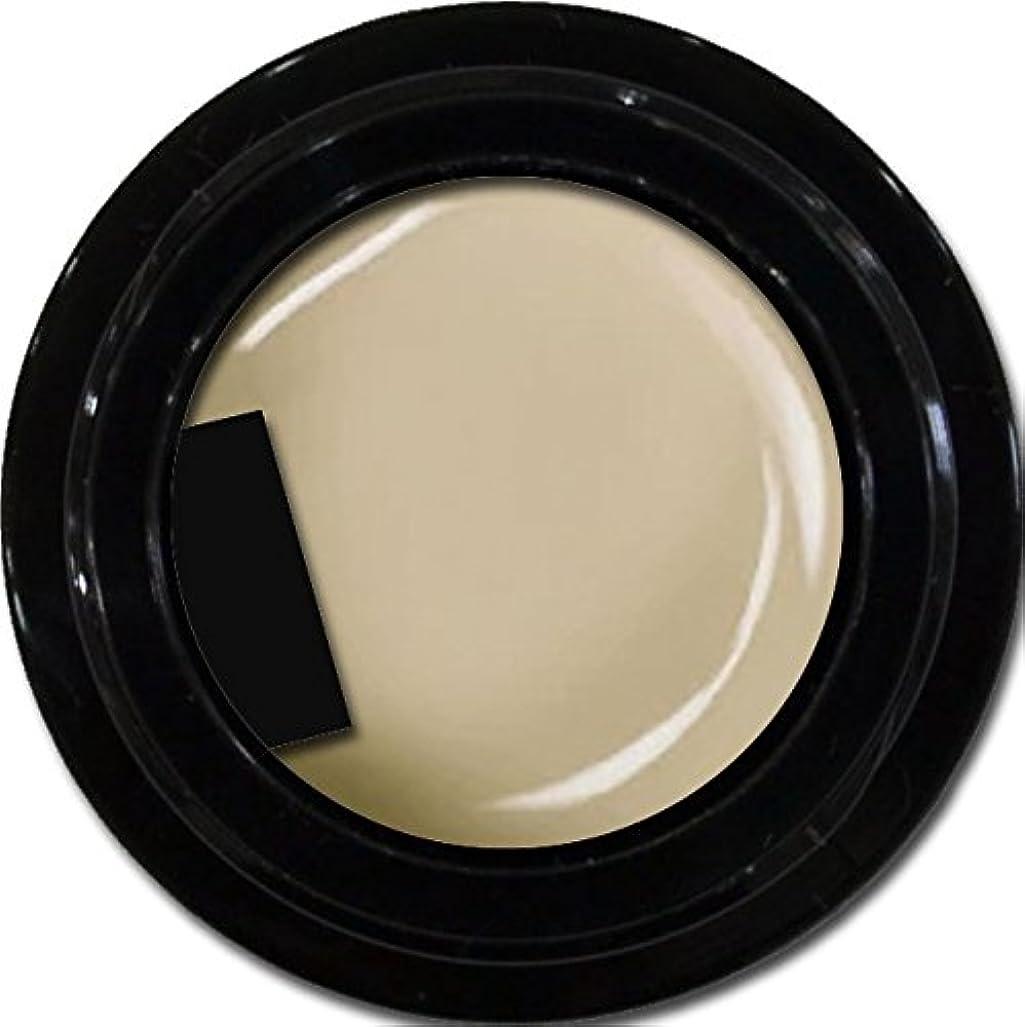 コマース開拓者提供するカラージェル enchant color gel M804 AshGray 3g/ マットカラージェル M804 アッシュグレー 3グラム