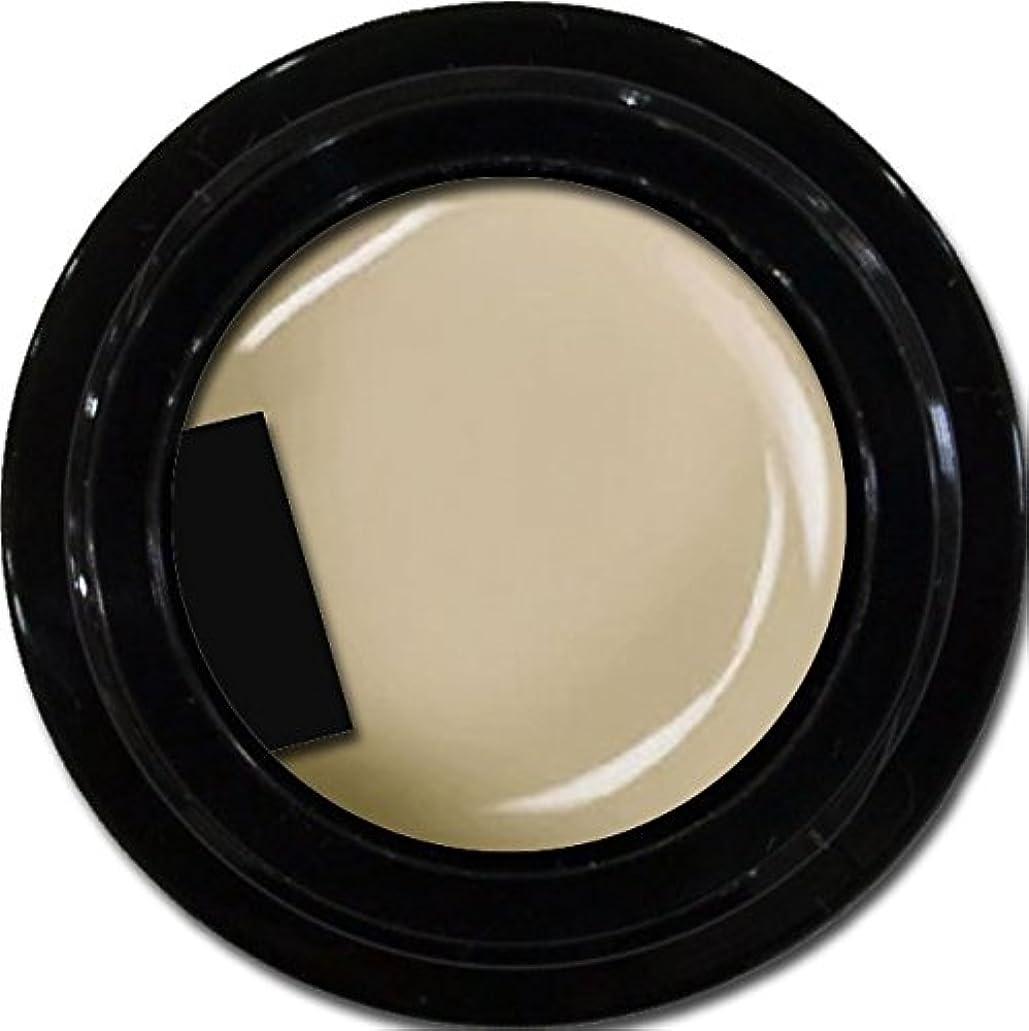 カラージェル enchant color gel M804 AshGray 3g/ マットカラージェル M804 アッシュグレー 3グラム
