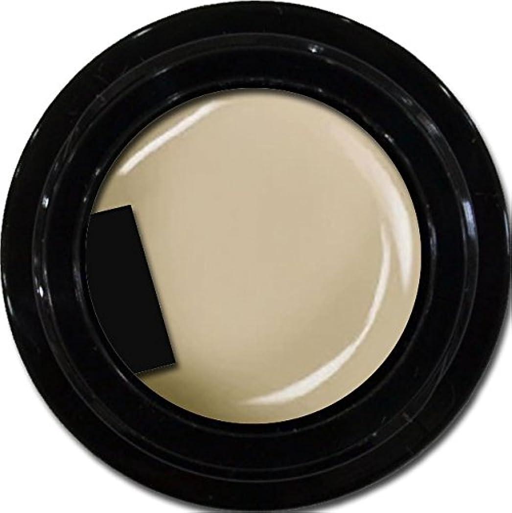 ホイッスルかろうじてボードカラージェル enchant color gel M804 AshGray 3g/ マットカラージェル M804 アッシュグレー 3グラム