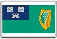 Ireland, Dublin City flag fridge magnet - ?????????