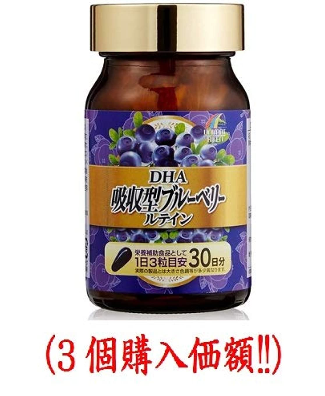 遅い湿原再生的DHA吸収型ブルーベリールテイン500mlx90粒(3個購入価額)????????