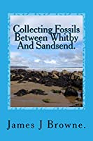 Collecting Fossils Between Whitby And Sandsend.: A Beginner's Guide.