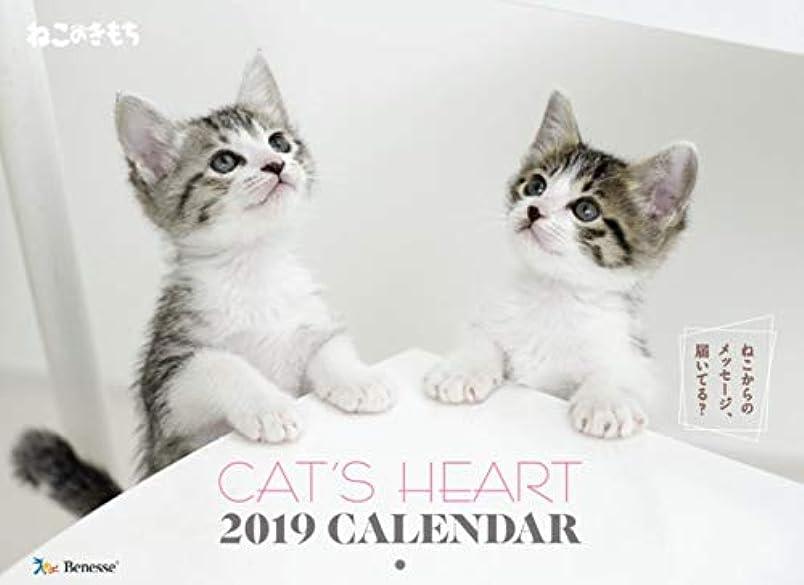 衝動排出発掘ねこのきもちカレンダー2020