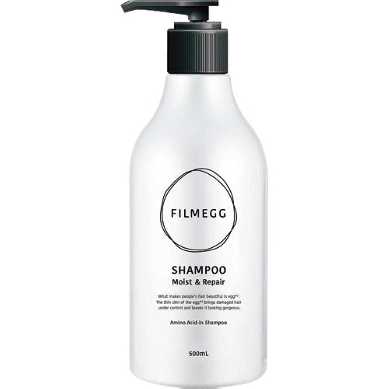 最大限症状乳製品ウエルネスボーテ フィルメッグ シャンプー