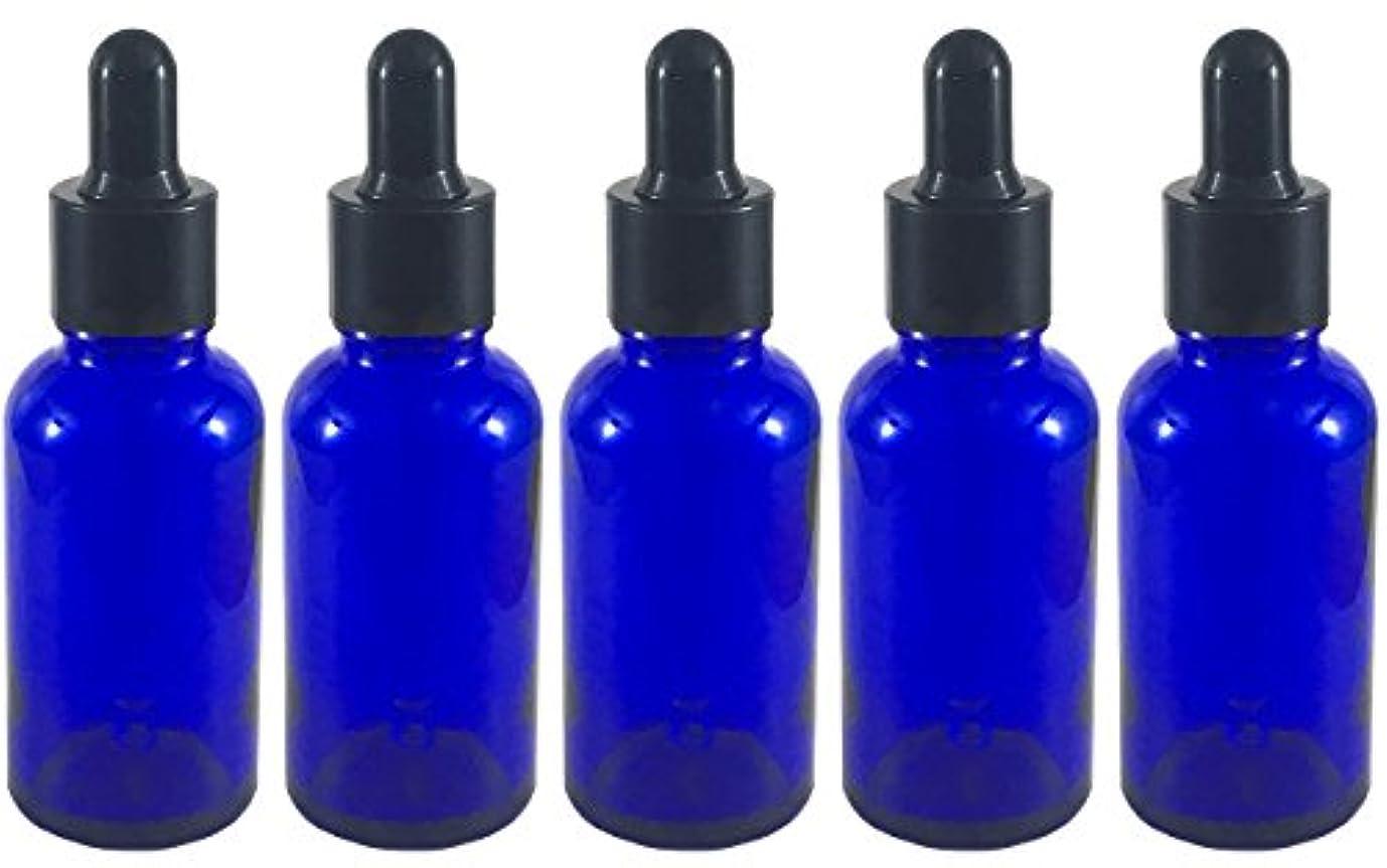 姉妹合理化誰のスポイト 付き 遮光瓶 5本セット ガラス製 アロマオイル エッセンシャルオイル アロマ 遮光ビン 保存用 精油 ガラスボトル 保存容器詰め替え 青色 ブルー (30ml?5本)