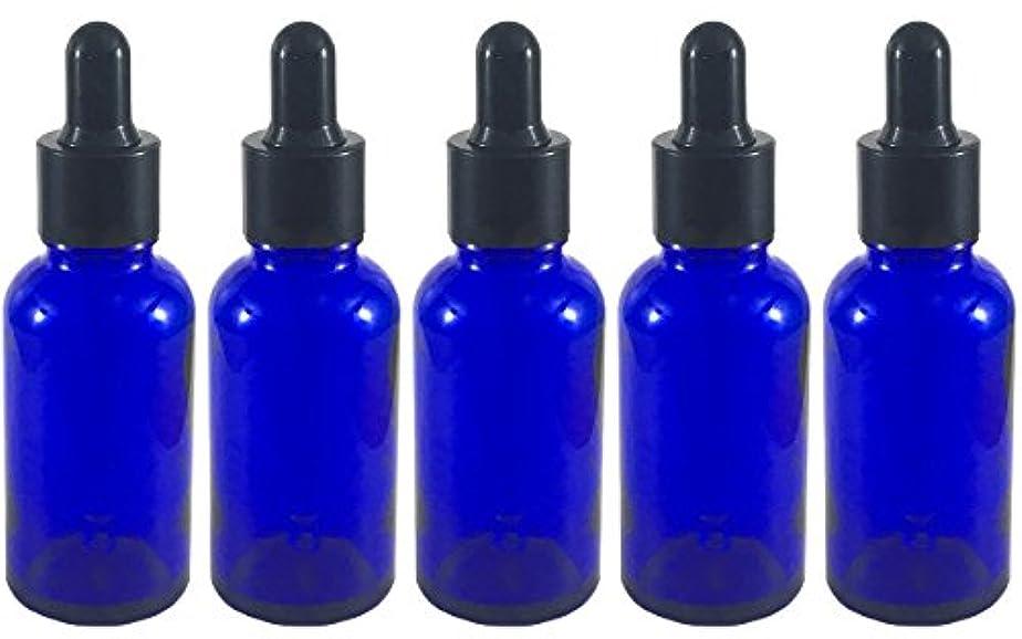 スポイト 付き 遮光瓶 5本セット ガラス製 アロマオイル エッセンシャルオイル アロマ 遮光ビン 保存用 精油 ガラスボトル 保存容器詰め替え 青色 ブルー (30ml?5本)