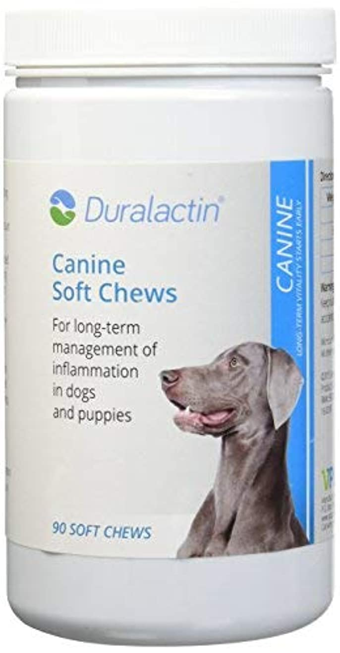 驚くばかりトレッド凍結Duralactin Canine (Long Term Inflammation Support) - 90 Soft Chews [並行輸入品]