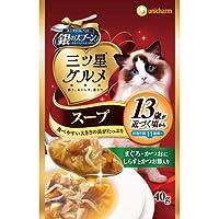銀のスプーン おいしいスープ 13歳以上用 まぐろ・かつおにしらすとかつお節入り 40g×12コ