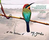at the bottom of my garden: An illustrated story of the fascinating and spectacular birdlife in a place called Edenville