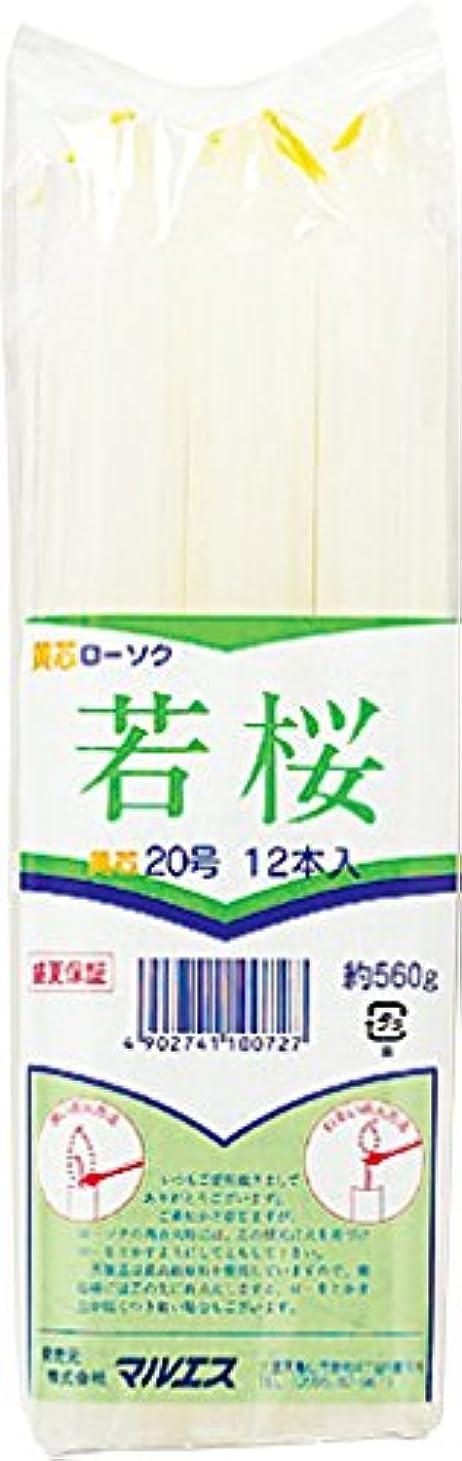 ラブ精度公平マルエス ろうそく 若桜変形 黄芯20号 560g (12本)