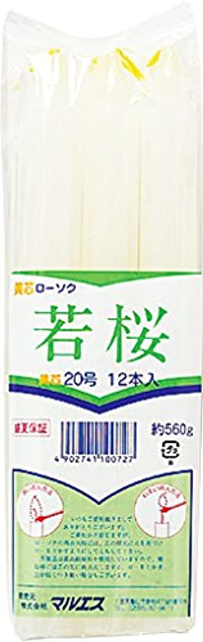 税金細部ポインタマルエス ろうそく 若桜変形 黄芯20号 560g (12本)