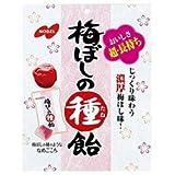 ノーベル製菓 梅ぼしの種飴 30g×6袋入×(2ケース)