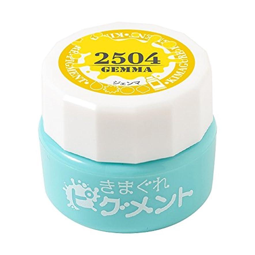 完了石油規定Bettygel きまぐれピグメント ジェンマ QYJ-2504 4g UV/LED対応