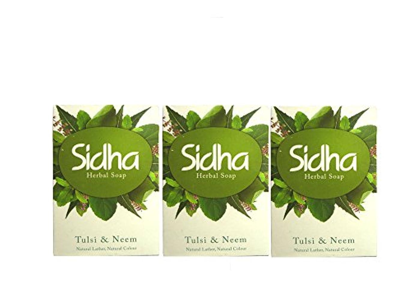 パーセント意義追加SIHDH Herbal Soap Tulsi & Neem シダー ハ-バル ソープ 75g 3個セット