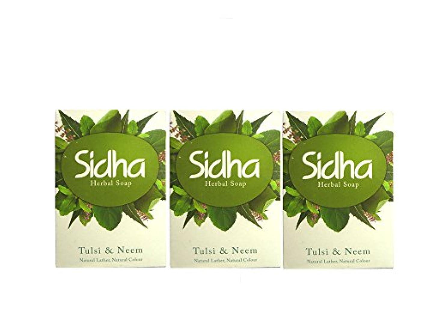 しなやかな赤面受け皿SIHDH Herbal Soap Tulsi & Neem シダー ハ-バル ソープ 75g 3個セット