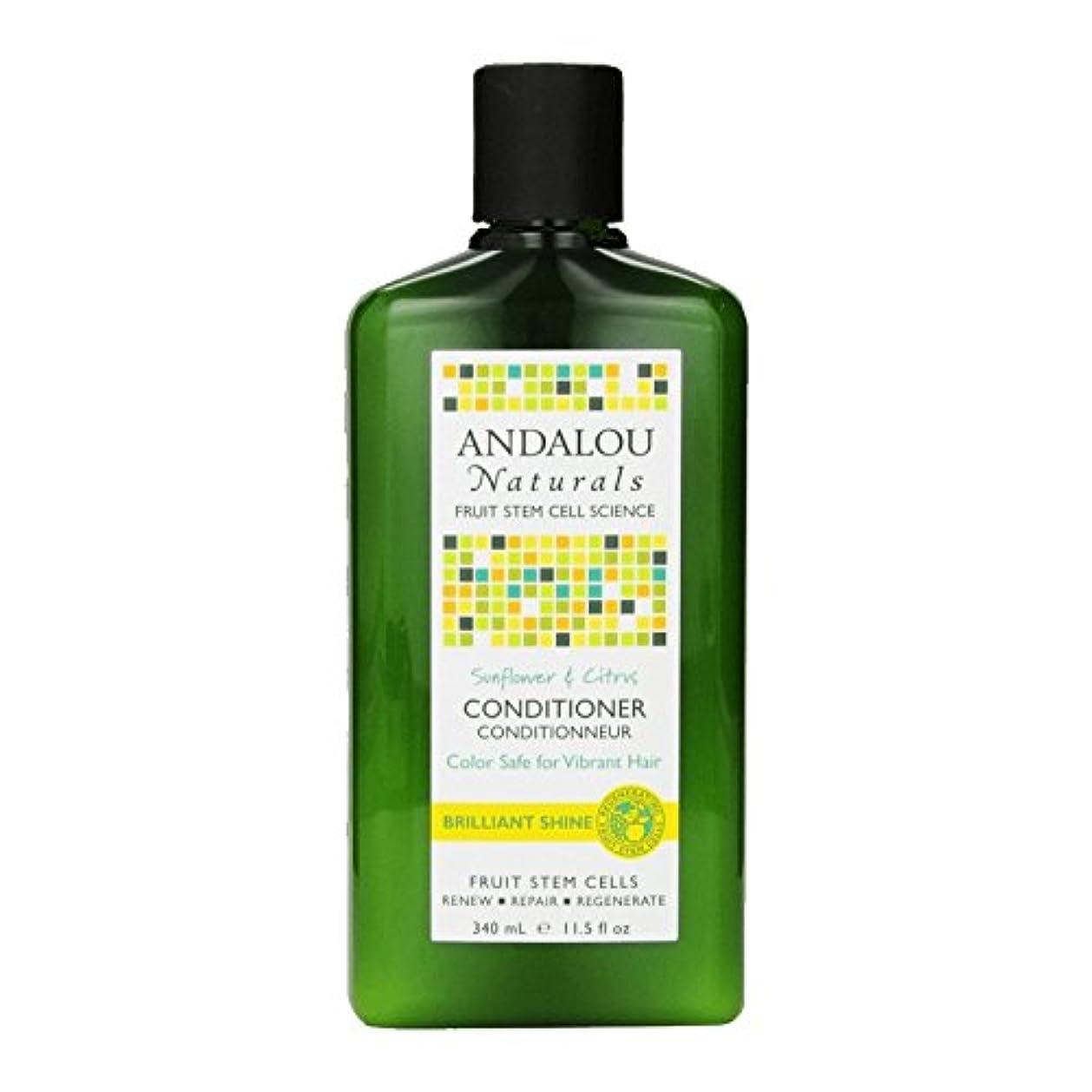 クラス意外地中海Andalou Sunflower & Citrus Brilliant Shine Conditioner 340ml (Pack of 2) - アンダロウひまわり&シトラス鮮やかな輝きコンディショナー340ミリリットル...