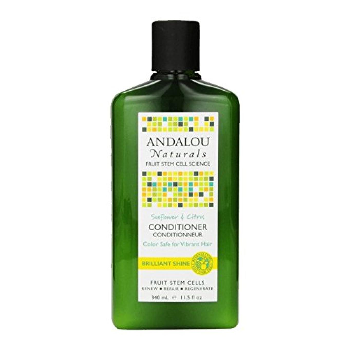 デクリメント精度カフェテリアAndalou Sunflower & Citrus Brilliant Shine Conditioner 340ml (Pack of 2) - アンダロウひまわり&シトラス鮮やかな輝きコンディショナー340ミリリットル...