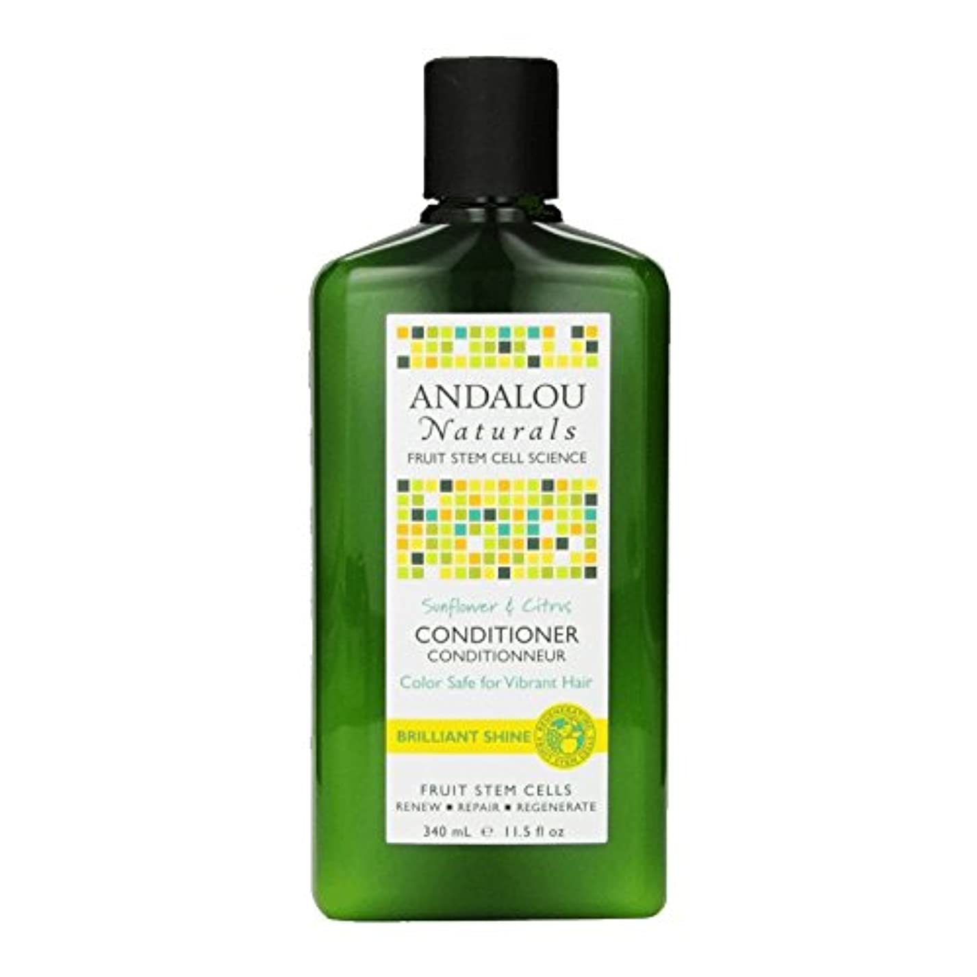 関連付ける味評論家Andalou Sunflower & Citrus Brilliant Shine Conditioner 340ml (Pack of 2) - アンダロウひまわり&シトラス鮮やかな輝きコンディショナー340ミリリットル (x2) [並行輸入品]