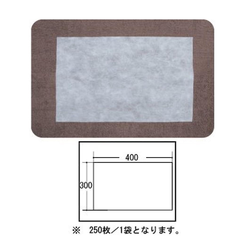 栄養自分自身救急車(ロータス)LOTUS 日本製 ピロカバー カット無し 250枚入 業務用 マルチな不織布カバー