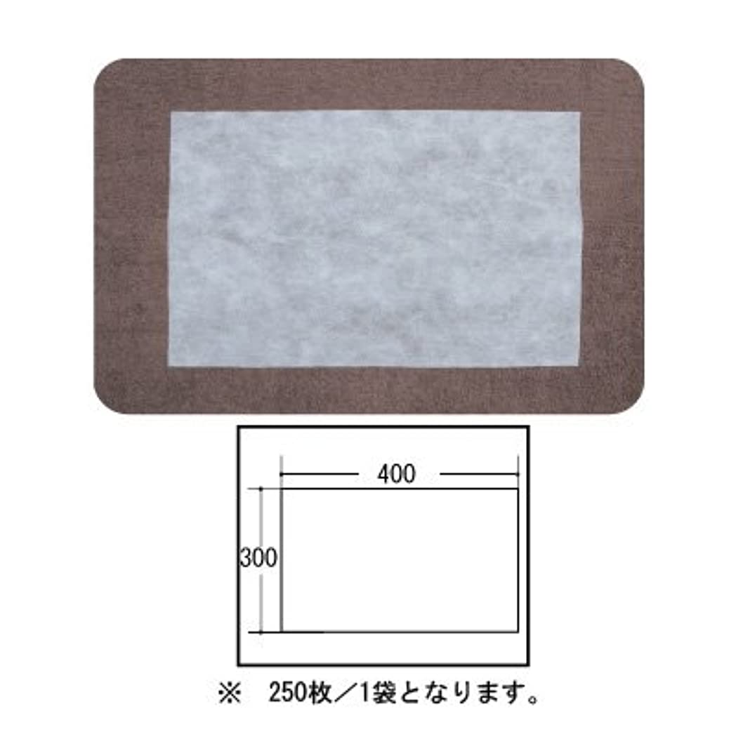 方法論エンジニアリングフレット(ロータス)LOTUS 日本製 ピロカバー カット無し 250枚入 業務用 マルチな不織布カバー
