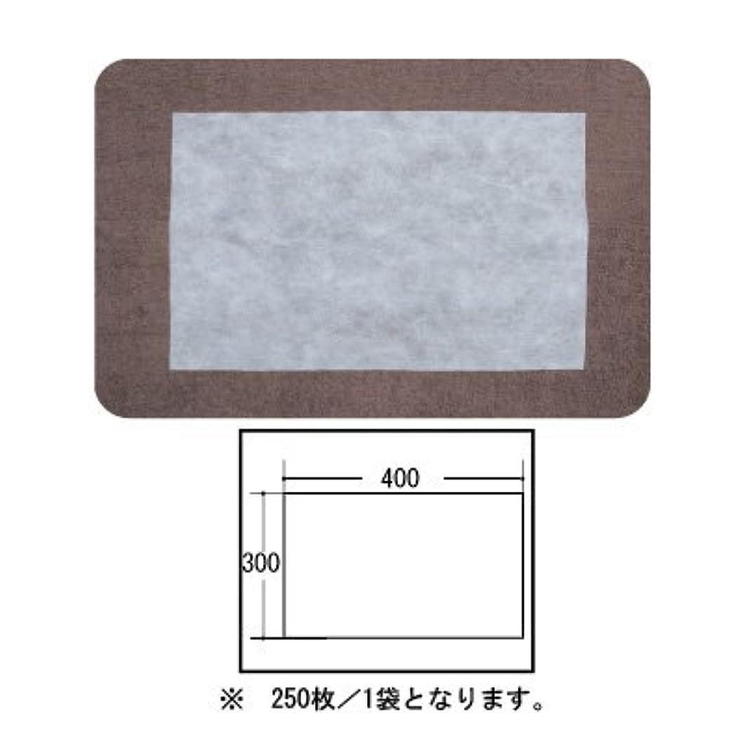 矩形暫定ボルト(ロータス)LOTUS 日本製 ピロカバー カット無し 250枚入 業務用 マルチな不織布カバー