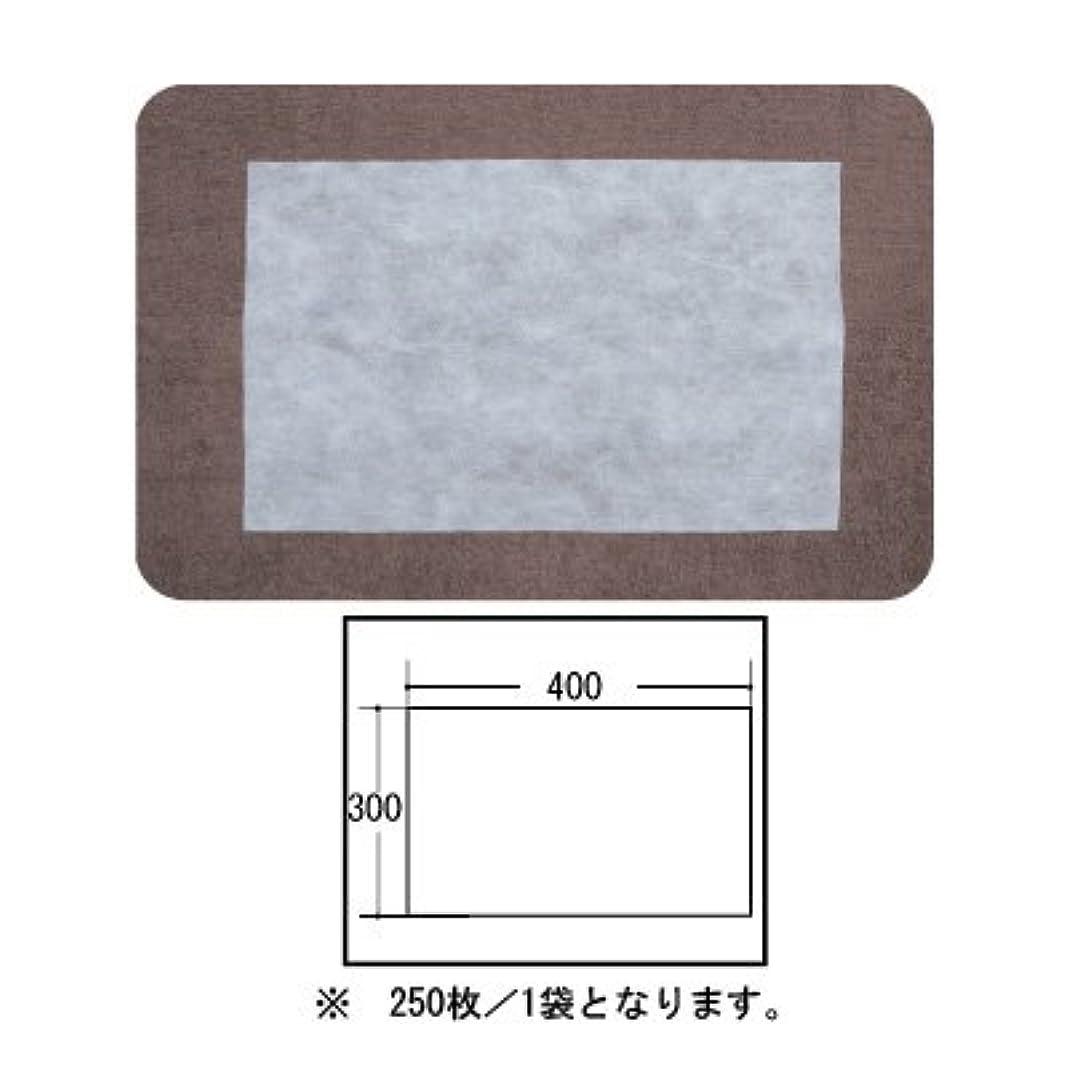 やけど好意理想的(ロータス)LOTUS 日本製 ピロカバー カット無し 250枚入 業務用 マルチな不織布カバー
