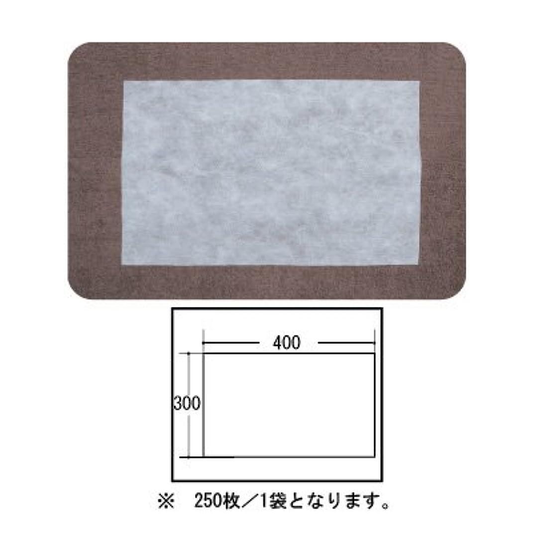 重くする避ける不名誉な(ロータス)LOTUS 日本製 ピロカバー カット無し 250枚入 業務用 マルチな不織布カバー