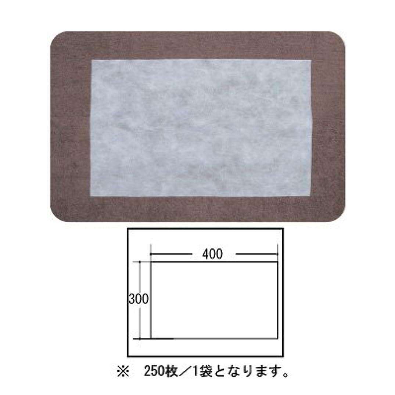 会話日記人事(ロータス)LOTUS 日本製 ピロカバー カット無し 250枚入 業務用 マルチな不織布カバー