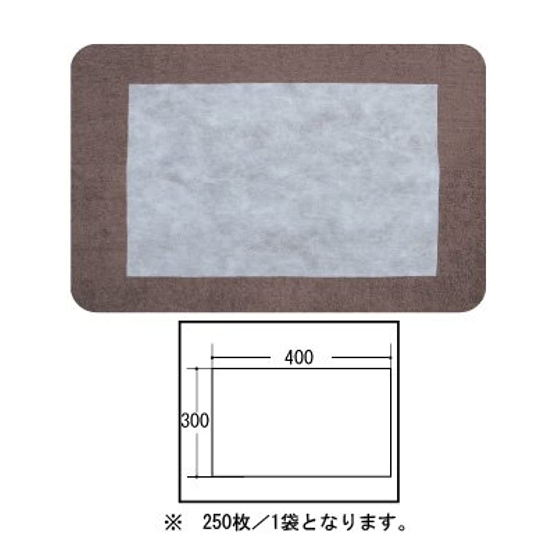 最終的にせっかち無声で(ロータス)LOTUS 日本製 ピロカバー カット無し 250枚入 業務用 マルチな不織布カバー