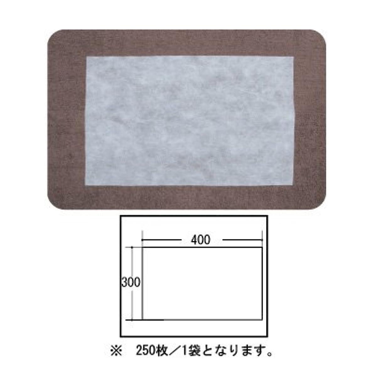 縁石トロピカルポインタ(ロータス)LOTUS 日本製 ピロカバー カット無し 250枚入 業務用 マルチな不織布カバー