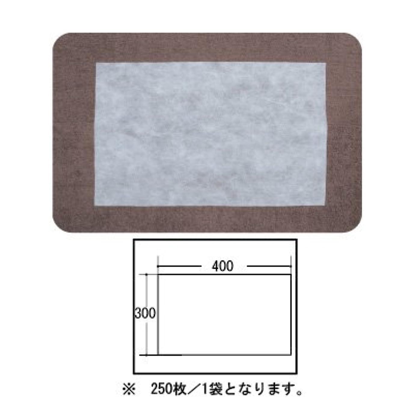 世紀生き物やりすぎ(ロータス)LOTUS 日本製 ピロカバー カット無し 250枚入 業務用 マルチな不織布カバー
