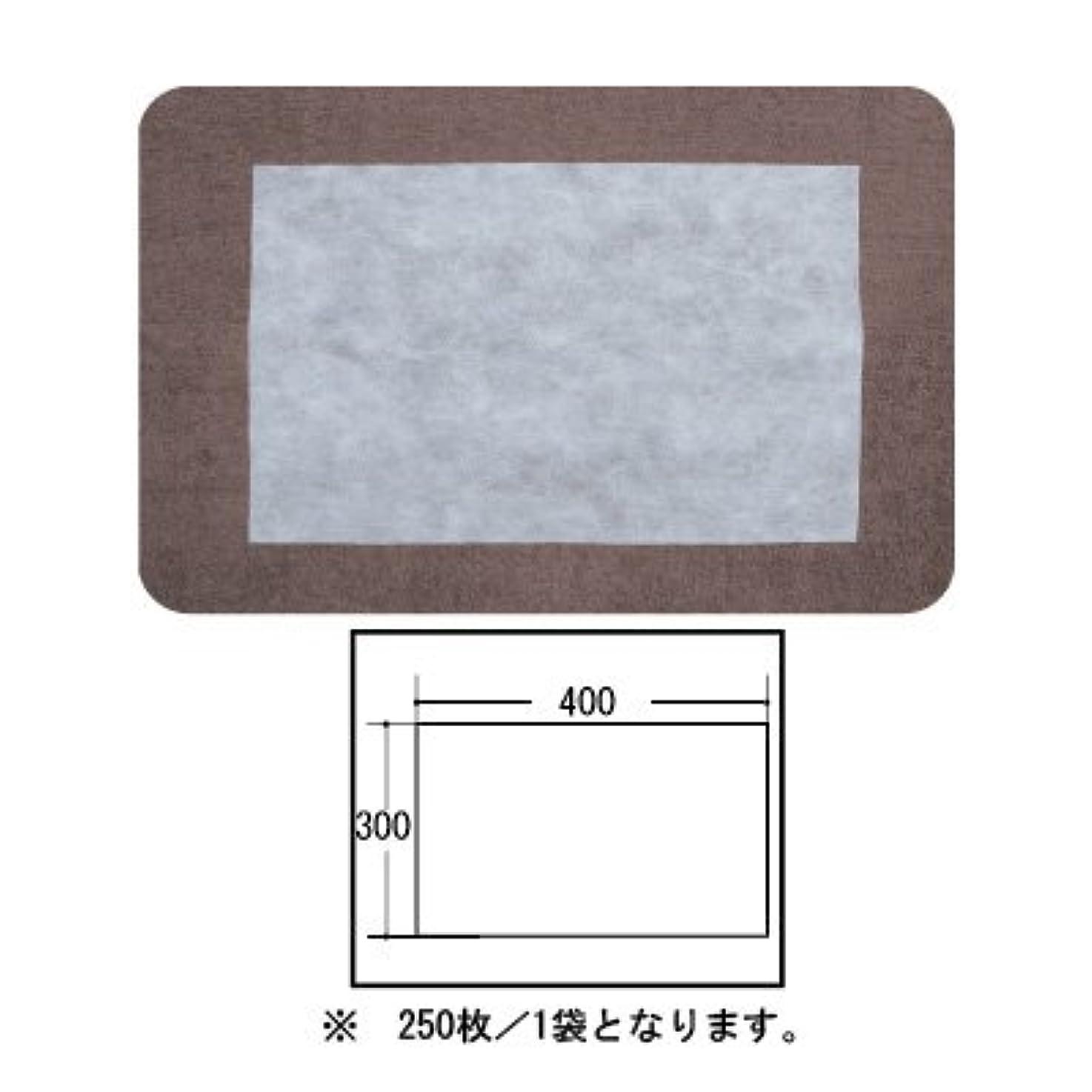 予見する煙突後悔(ロータス)LOTUS 日本製 ピロカバー カット無し 250枚入 業務用 マルチな不織布カバー