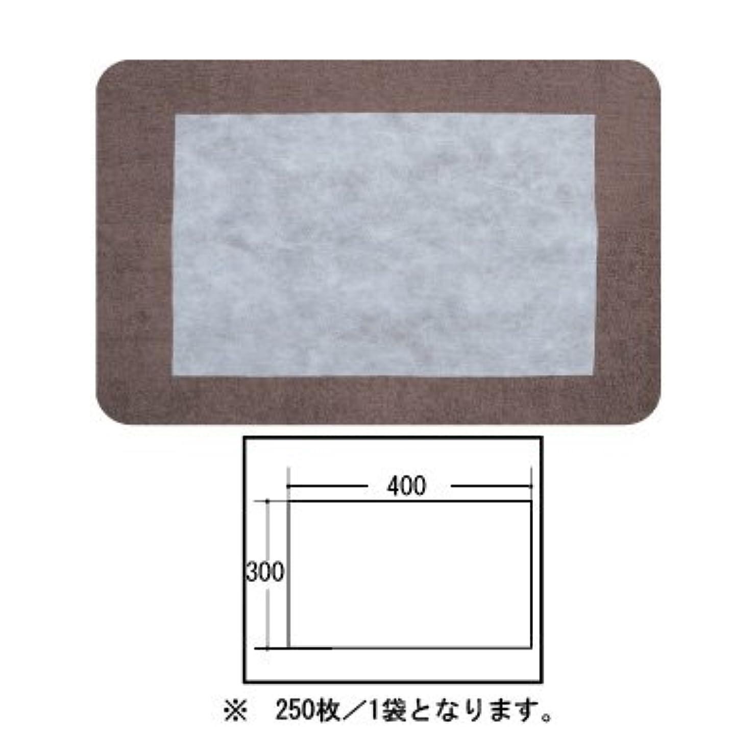 廊下自然公園ベンチ(ロータス)LOTUS 日本製 ピロカバー カット無し 250枚入 業務用 マルチな不織布カバー