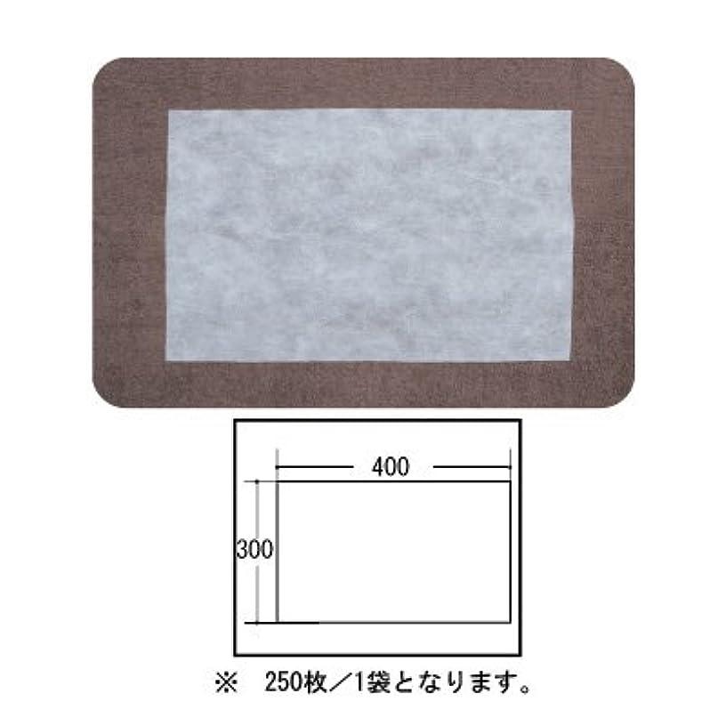 カプラー卵風(ロータス)LOTUS 日本製 ピロカバー カット無し 250枚入 業務用 マルチな不織布カバー
