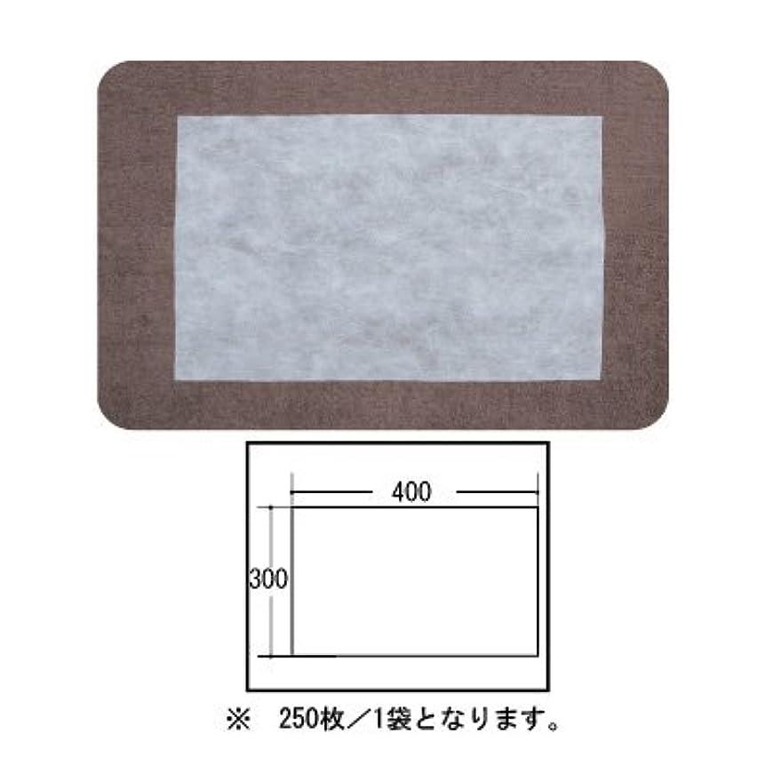獲物擬人悪質な(ロータス)LOTUS 日本製 ピロカバー カット無し 250枚入 業務用 マルチな不織布カバー