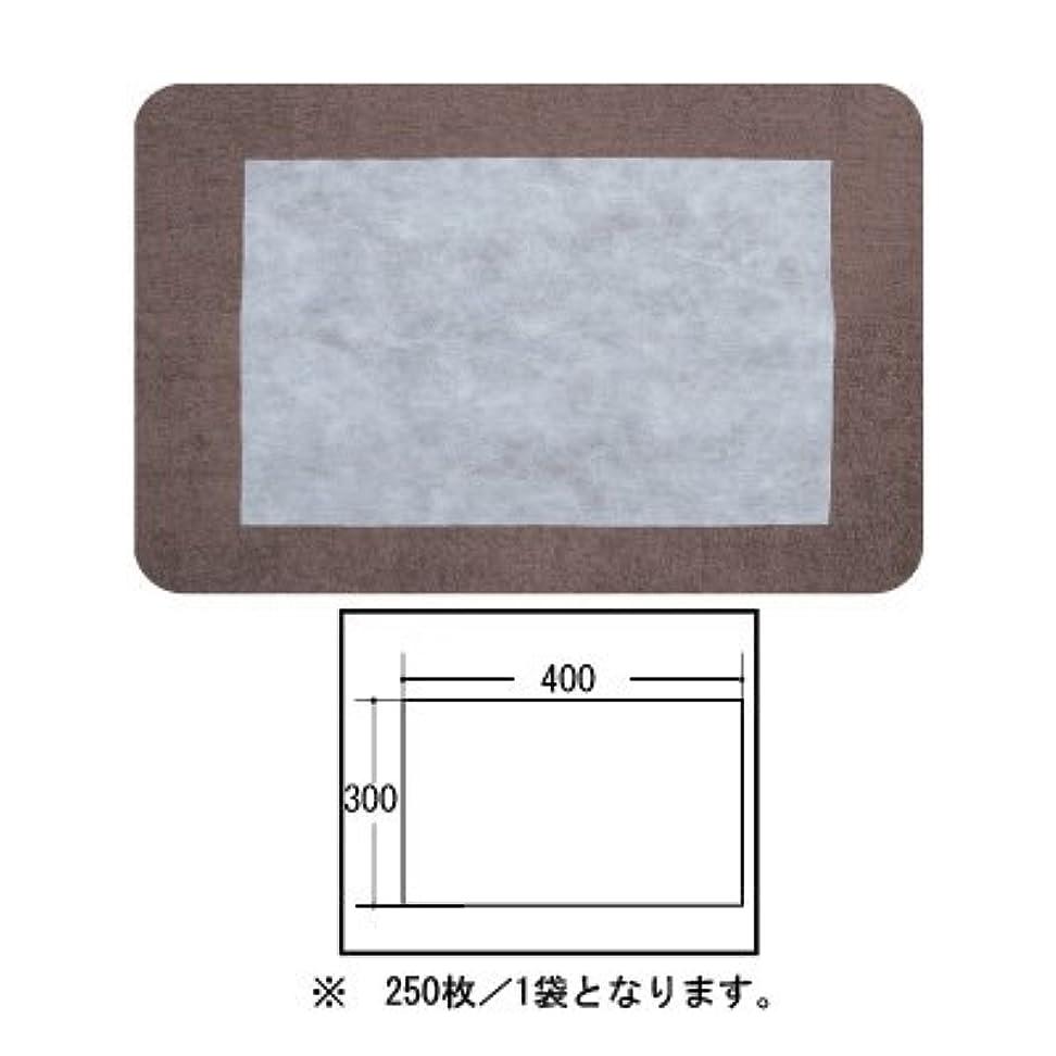 式パウダー底(ロータス)LOTUS 日本製 ピロカバー カット無し 250枚入 業務用 マルチな不織布カバー