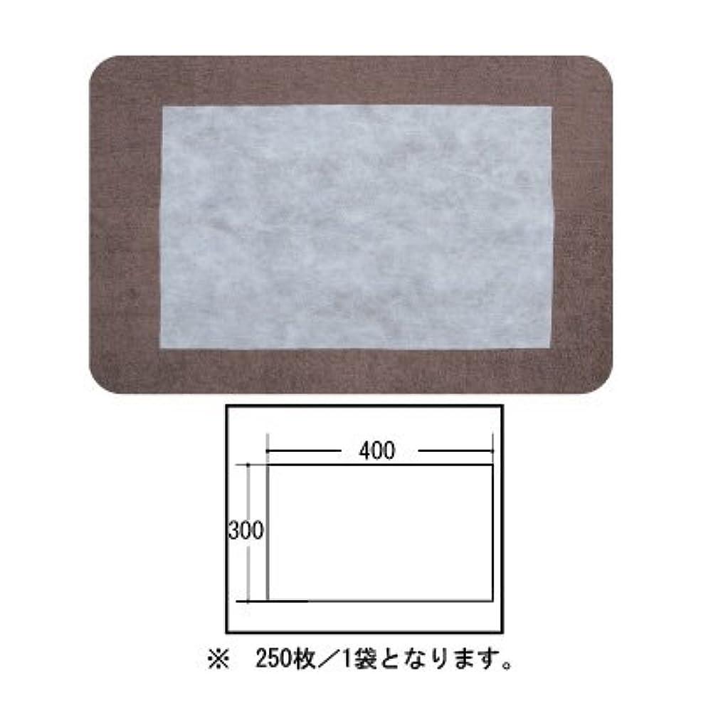 (ロータス)LOTUS 日本製 ピロカバー カット無し 250枚入 業務用 マルチな不織布カバー