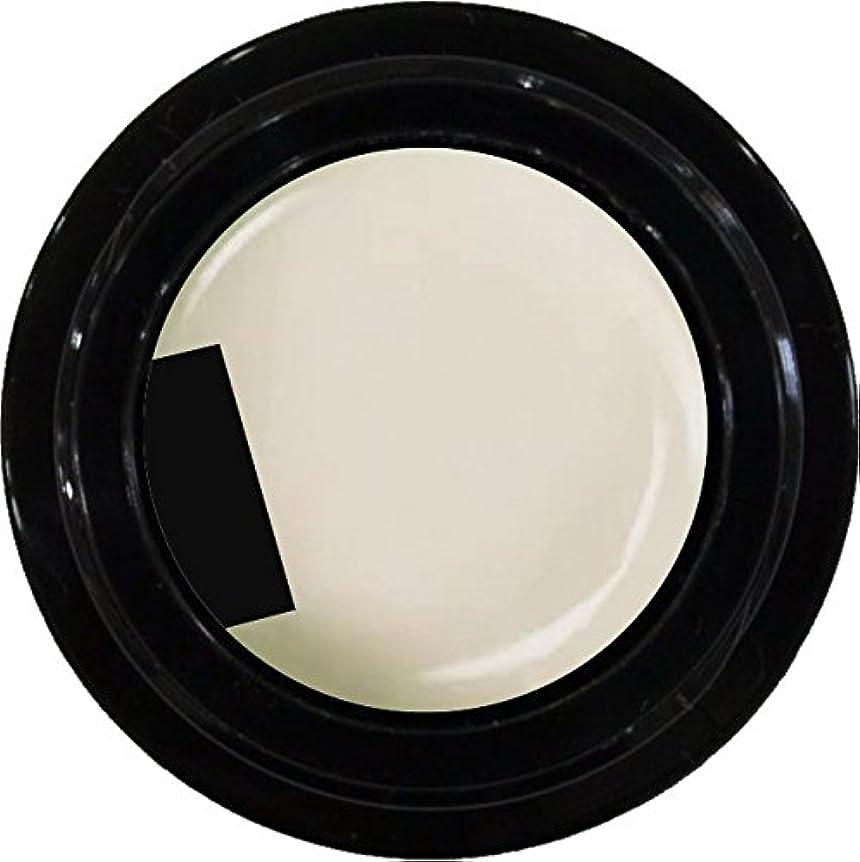 ガイドライン備品偽物カラージェル enchant color gel M006 MilkyWhite 3g/ マットカラージェル M006 ミルキーホワイト 3グラム