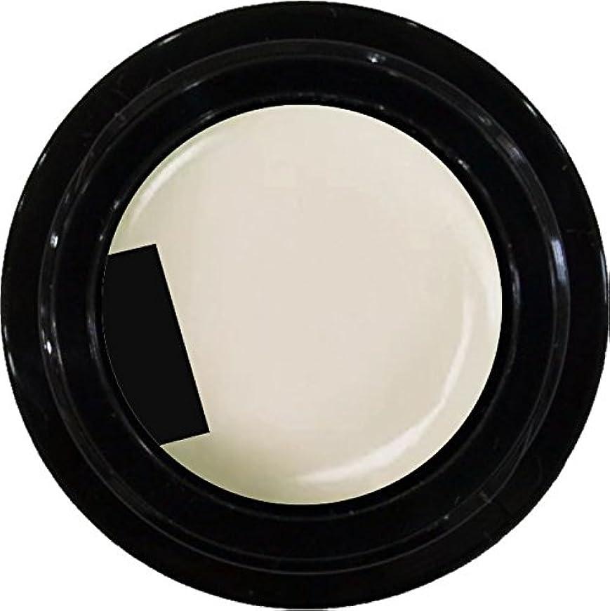 添加剤ランプ電話するカラージェル enchant color gel M006 MilkyWhite 3g/ マットカラージェル M006 ミルキーホワイト 3グラム