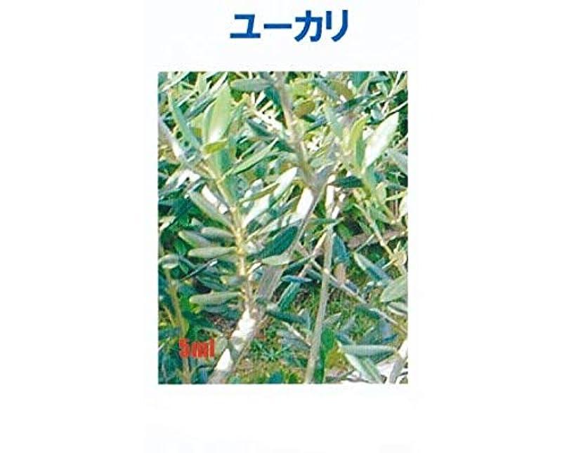 東舌な方法アロマオイル ユーカリ 5ml エッセンシャルオイル 100%天然成分