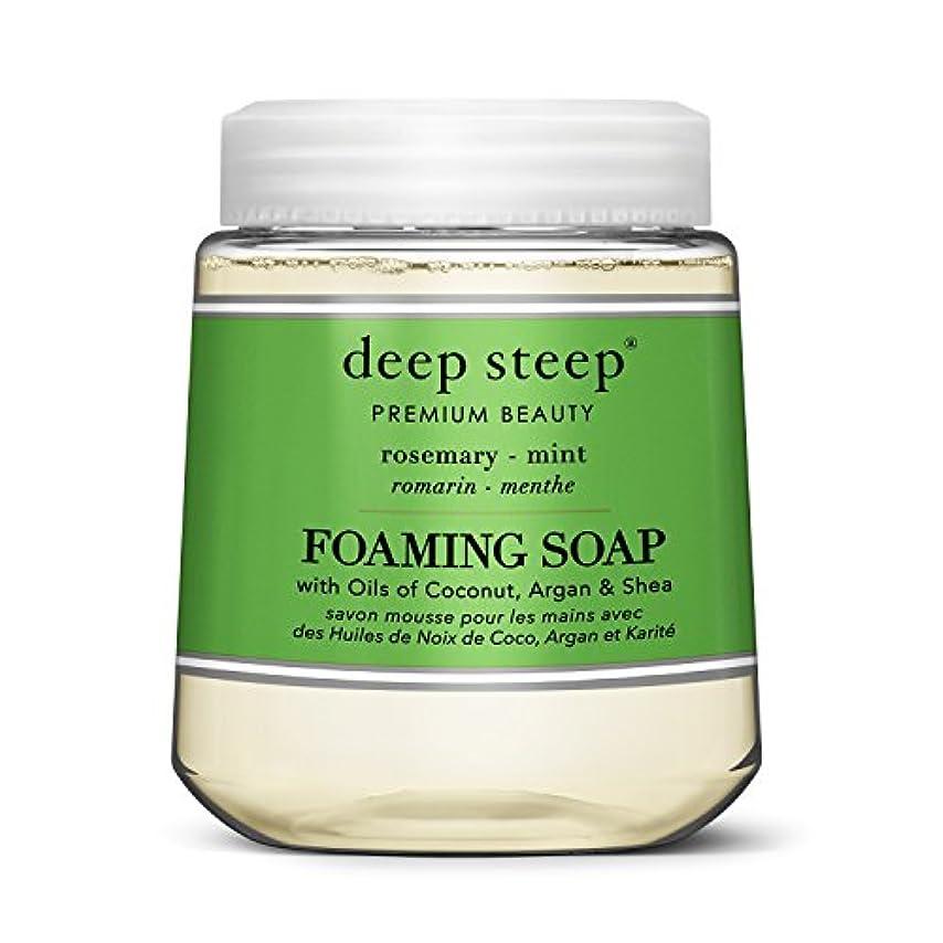 細菌到着するボーカルsimplehuman Deep Steep 10 Fl。オンスローズマリーミントFoaming Hand Washカートリッジ