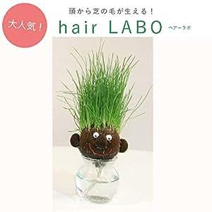 花ごころ 栽培セット Hair LABO ヘアラボ ラウンド