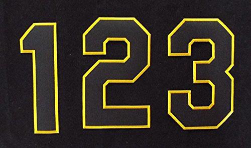 【プロ野球 阪神タイガースグッズ】背番号ワッペン(現行版・ホーム)種類:1(二桁用)