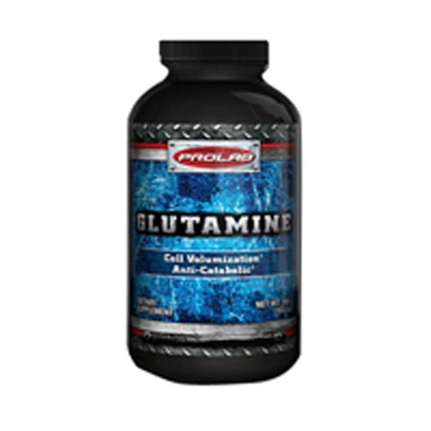 グルタミン パウダー 400 g 2個パック