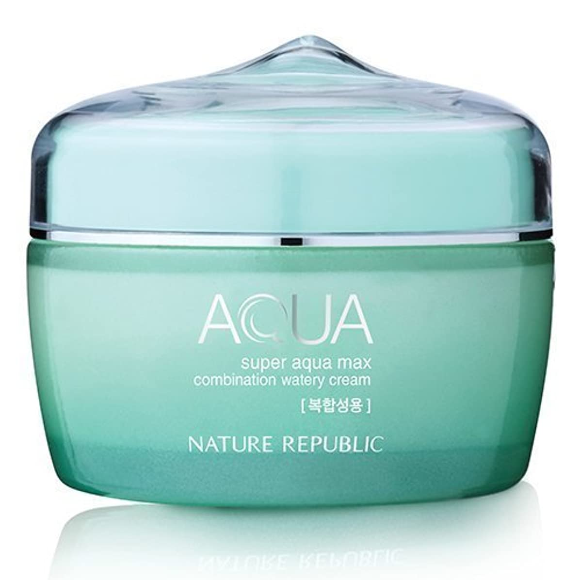 痛み彼ら状態Nature Republic Super Aqua Max Combination Watery Cream 80ml