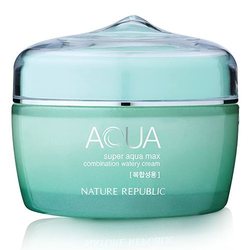 スタウトベッド距離Nature Republic Super Aqua Max Combination Watery Cream 80ml
