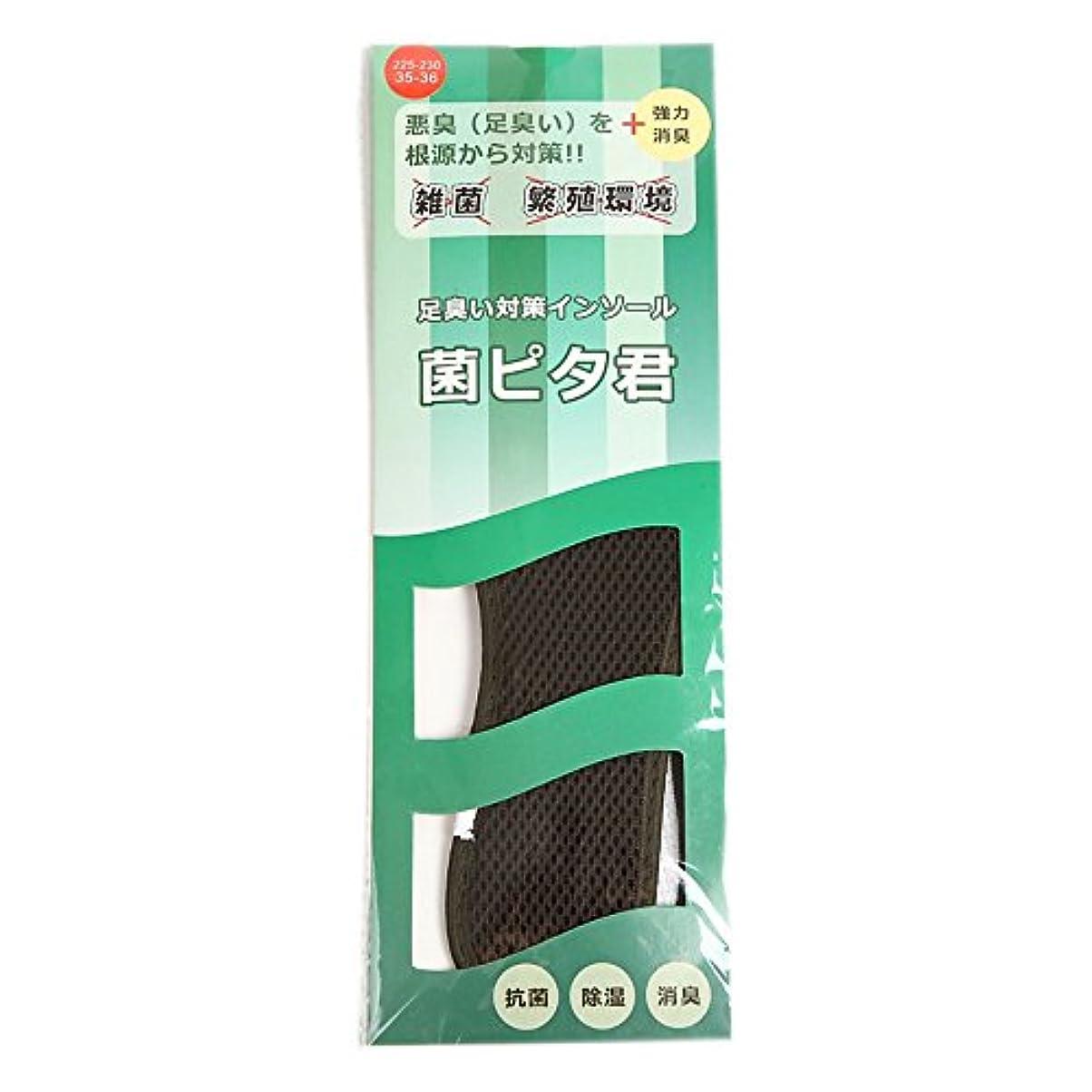 確かなレイアウト継続中足臭い対策インソール(靴の中敷) 菌ピタ君 1足分(2枚入) (29.5~30cm)