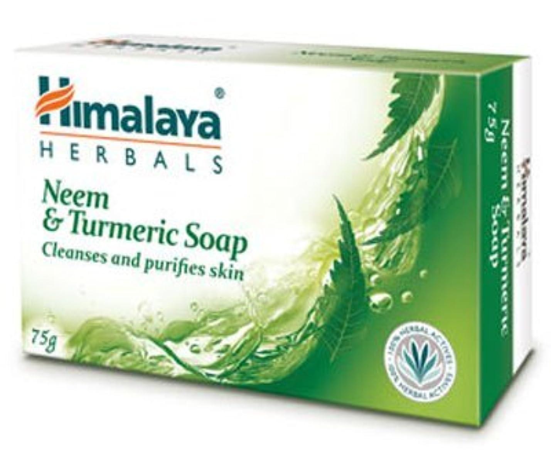 肉腫横に少ないHimalaya Neem & Turmeric Soap - 125gm